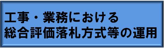 �H���E�Ɩ��ɂ����鑍���]�����D���̉^�p