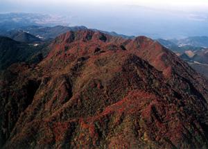 自然豊かで色鮮やかな山、雲仙・普賢岳